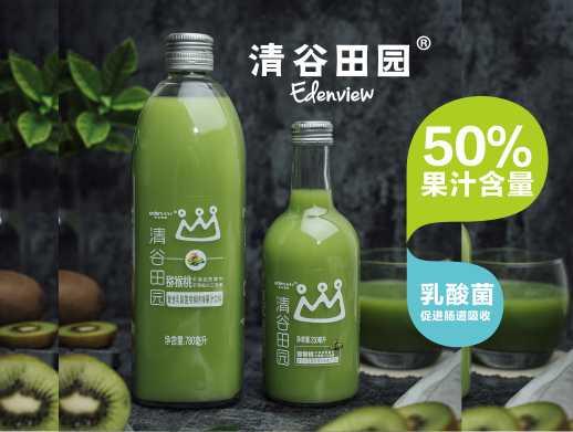 50%复合乳酸菌猕猴桃汁饮料